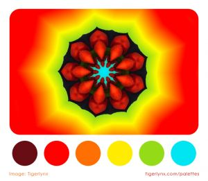 0010-red-kaleidoscope-colour-palette.jpg