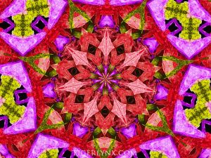 KA0011-red-kaleidoscope-650.jpg