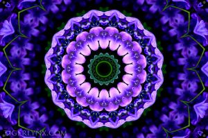 KA0040-purple-kaleidoscope-650.jpg