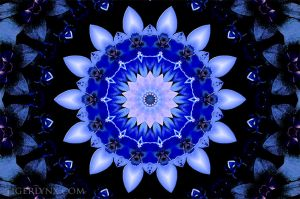 KA0047-blue-flower-kaleidoscope-650.jpg