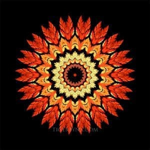 KA0057-orange-kaleidoscope-650.jpg