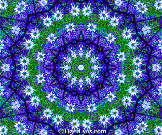 Blue & Green Nigella Flower Kaleidoscope Mandala Art