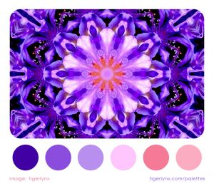 0007-purple-kaleidoscope-palette.jpg