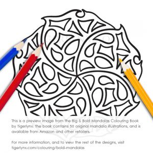 09-bold-mandalas-colouring-book-preview.jpg