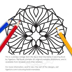 21-bold-mandalas-colouring-book-preview.jpg