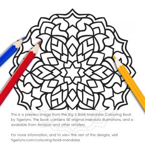 41-bold-mandalas-colouring-book-preview.jpg